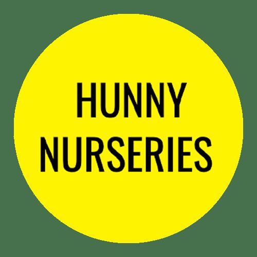Hunny Logo